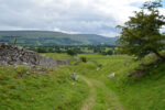 A Circular Walk from Aysgarth Falls, Wensleydale main