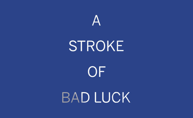 A Stroke of Bad Luck Diane Janes Book Review main logo
