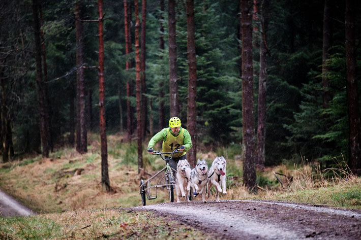 A Year in the Life of Dalby Forest bike