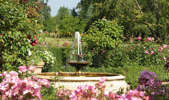 Additions to Make to your Garden for Summer water feature