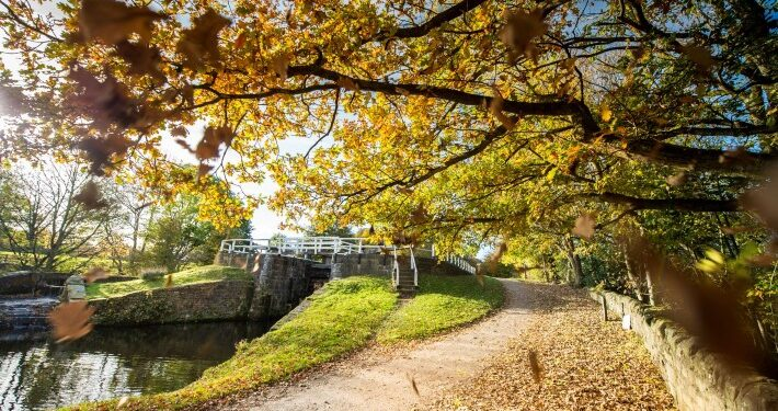Autumn Yorkshire Canals