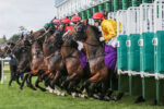 Best Horse Racing Courses In Yorkshire main