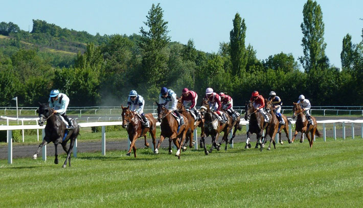 Betting Strategies that Every Gambler Needs to Know horses