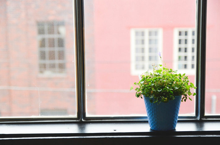 Choosing the Planter Colour for Decorating a Room window
