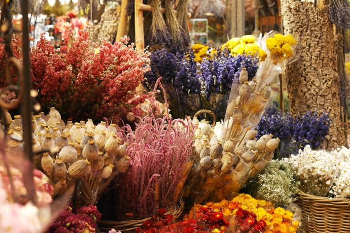 Decorating dried flowers in your interior buy