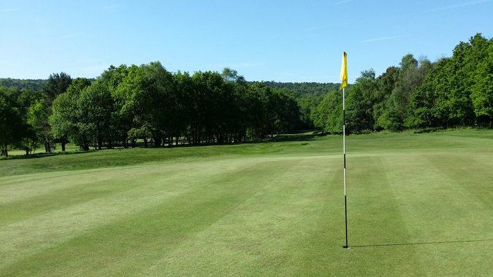 Golf Courses in Yorkshire for You to Try green