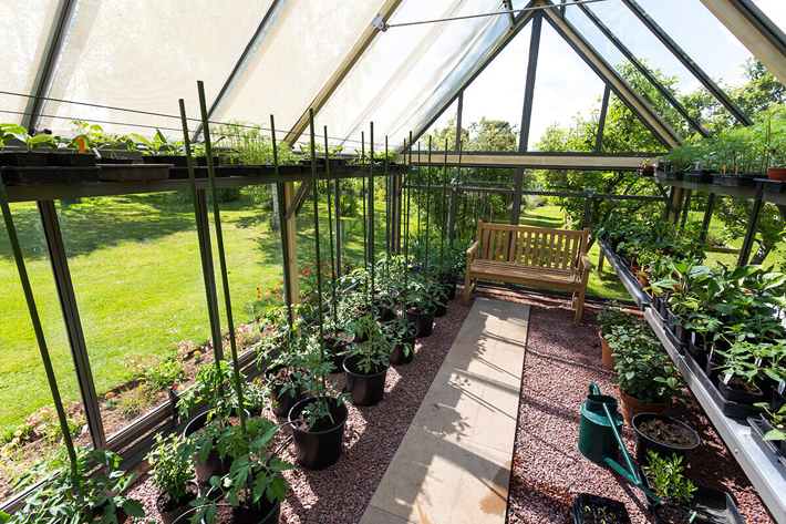 Growing Your Own Fruit and Vegetables greenhouse