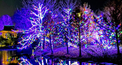 How to Make your Garden Christmassy this Year main