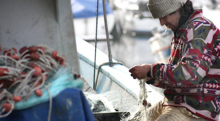 Is It Worth It To Become A Commercial Fisherman fishing