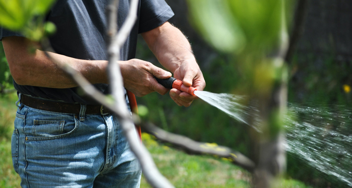 Key To Storing Your Garden Essentials Effectively hose