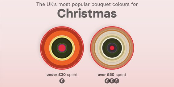 Most Popular Flower Colours by Budget & Gender Revealed christmas