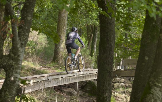 New Cycling Circuits in The Morvan woods