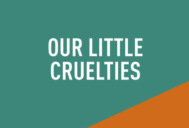 Our Little Cruelties by Liz Nugent book Review main logo