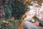 Preparing Your Home For The Autumn and Winter main