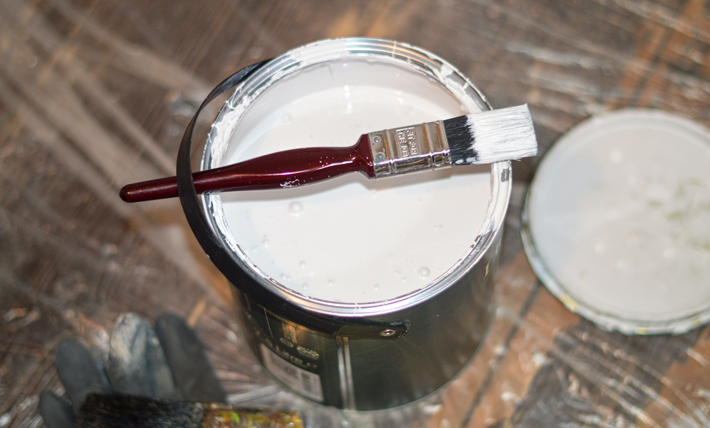 Preparing Your Property for New Tenants paint