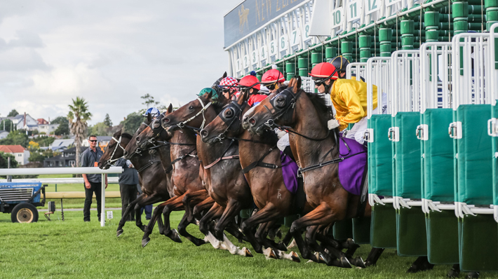 Race Favourites Ahead of the 2021 EBF Stallions John Musker Fillies' Stakes horses