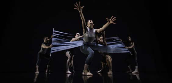 Rewind Forward by Yorke Dance Project Review Stanley and Audrey Burton Theatre Leeds untethered