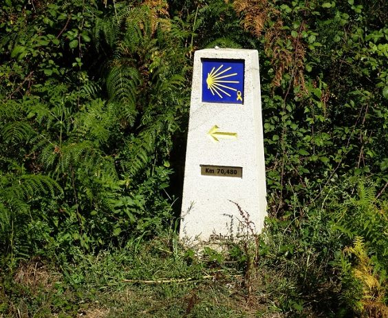 The Camino Portuguese is the Most Amazing way to Experience the Camino de Santiago signpost