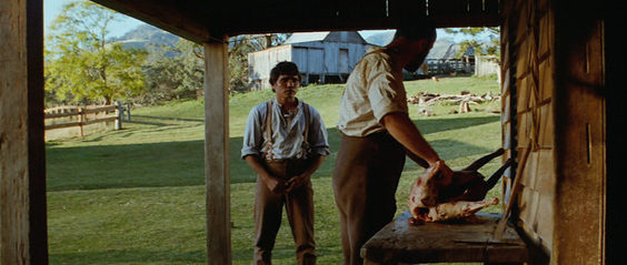 The Chant of Jimmie Blacksmith Film Review bluray