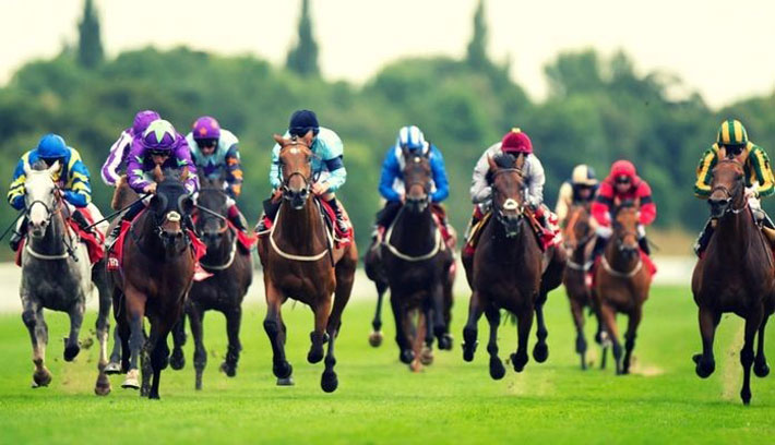 The Evolution of Horse Racing race