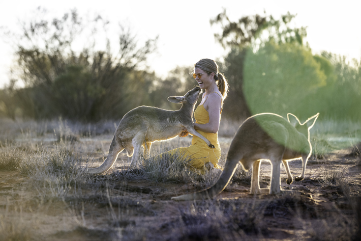 The Top End of Travel Destinations Northern Territory kangaroo