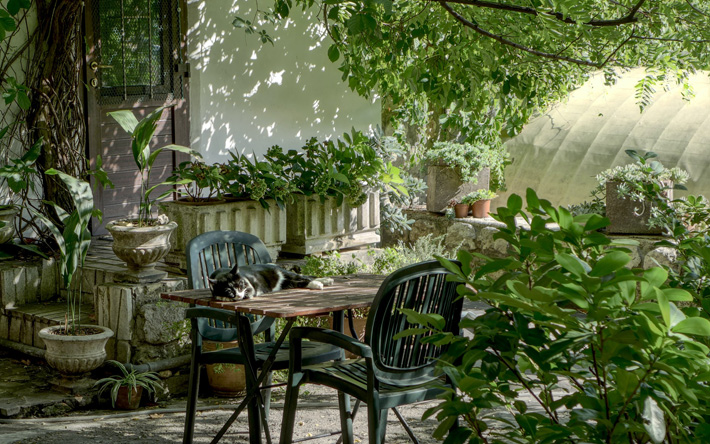 Types of Outdoor Furniture that will Look Mesmerising in your Surroundings garden