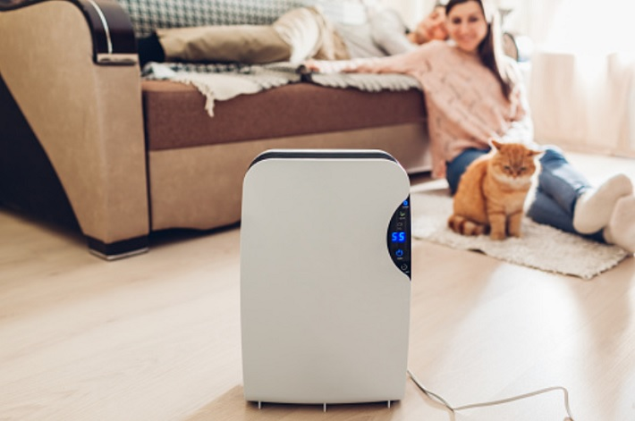 What are Dehumidifiers and What Benefits do they Have cat