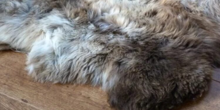 Why Sheepskin Rugs Remain the Ultimate Interior Statement main