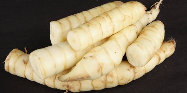 Why and How to Cook with Arrowroot main