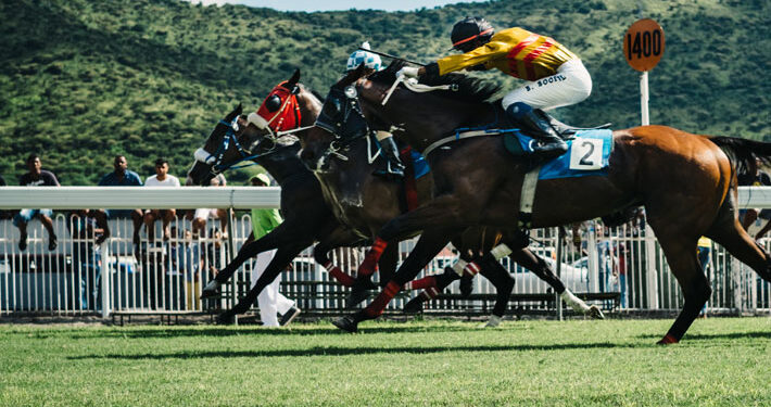 Yorkshire Horse Racing A New Home for the Sport of Kings horse main