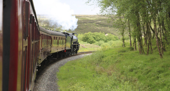 Yorkshire's Most Dog-Friendly Destinations steam train