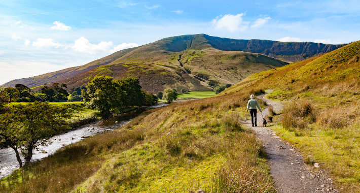 Yorkshire's Most Dog-Friendly Destinations yorkshire dales