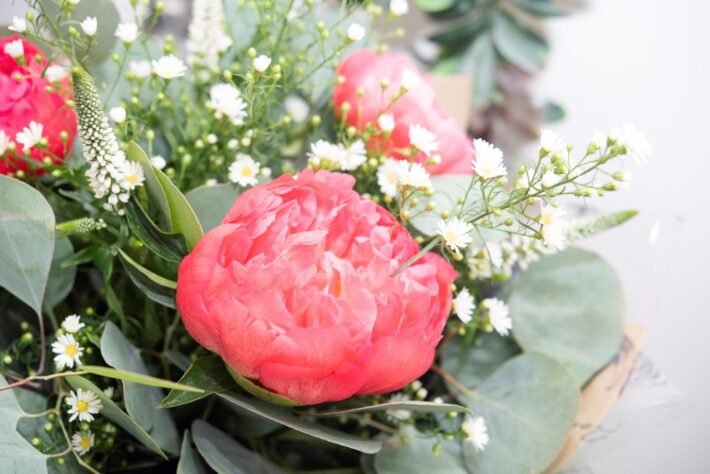 Your Go to Guide for Choosing Seasonal Flowers 1