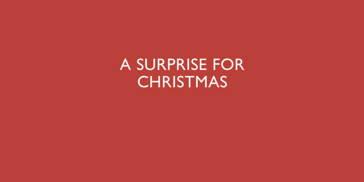 a surprise for christmas martin edwards book review main logo