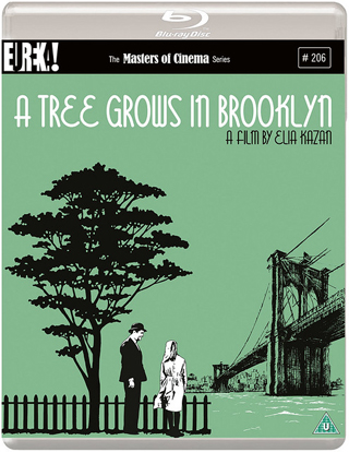 a tree grows in brooklyn film review cover