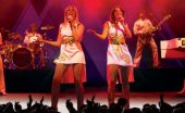 abba reunion tour interview greg stevenson