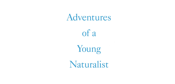 adventures of a young naturalist david attenborough book review logo
