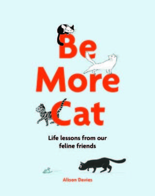 be more cat alison davies book review cover