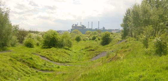 carlton colliery reclaimed land