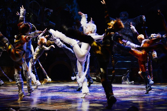 cats review leeds grand