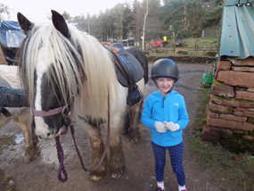 center parcs whinfell forest review pony