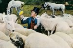doctor dolittle 1967 film review main