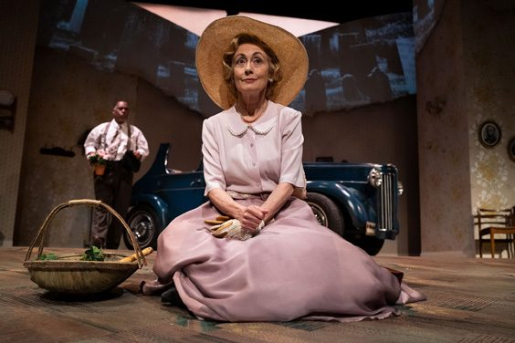driving miss daisy review york theatre royal june 2019 paula wilcox
