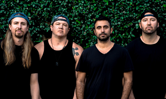 free rein rebelution album review band