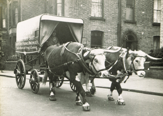 historic scarborough in old photographs advertising carts