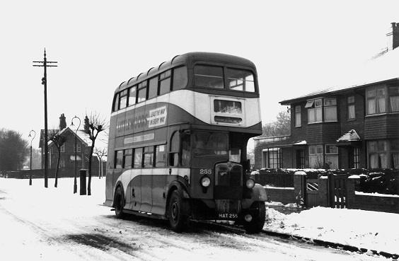 hull corporation buses AEC Regent II with Weymann H60R bodies. No. 255 at Wymersley Road in February 1954. (A.Cross)
