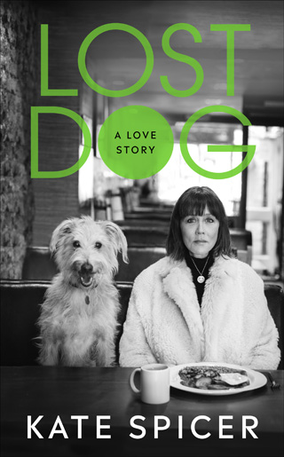 lost dog kate spicer book review cover