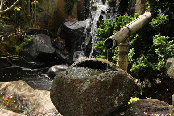 must-buy spring garden items water feature