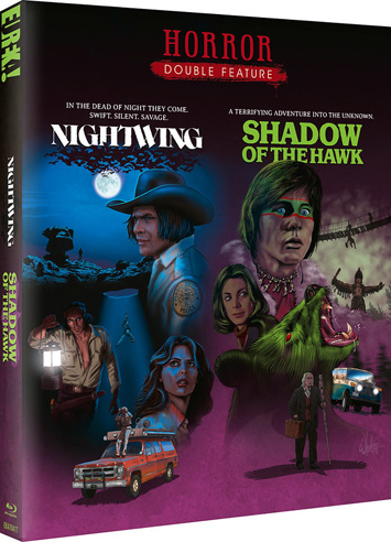 nightwing shadow of the hawk film review cover
