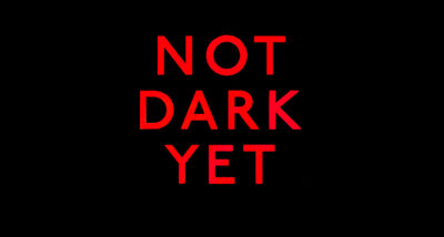 not dark yet peter robinson book review main logo